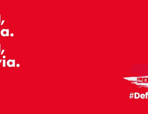 El PSOE de Segovia aprueba el Comité Electoral que coordinará la Campaña para las Elecciones Generales del 10N